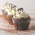 Rich Chocolate Ganache Mini Cupcakes