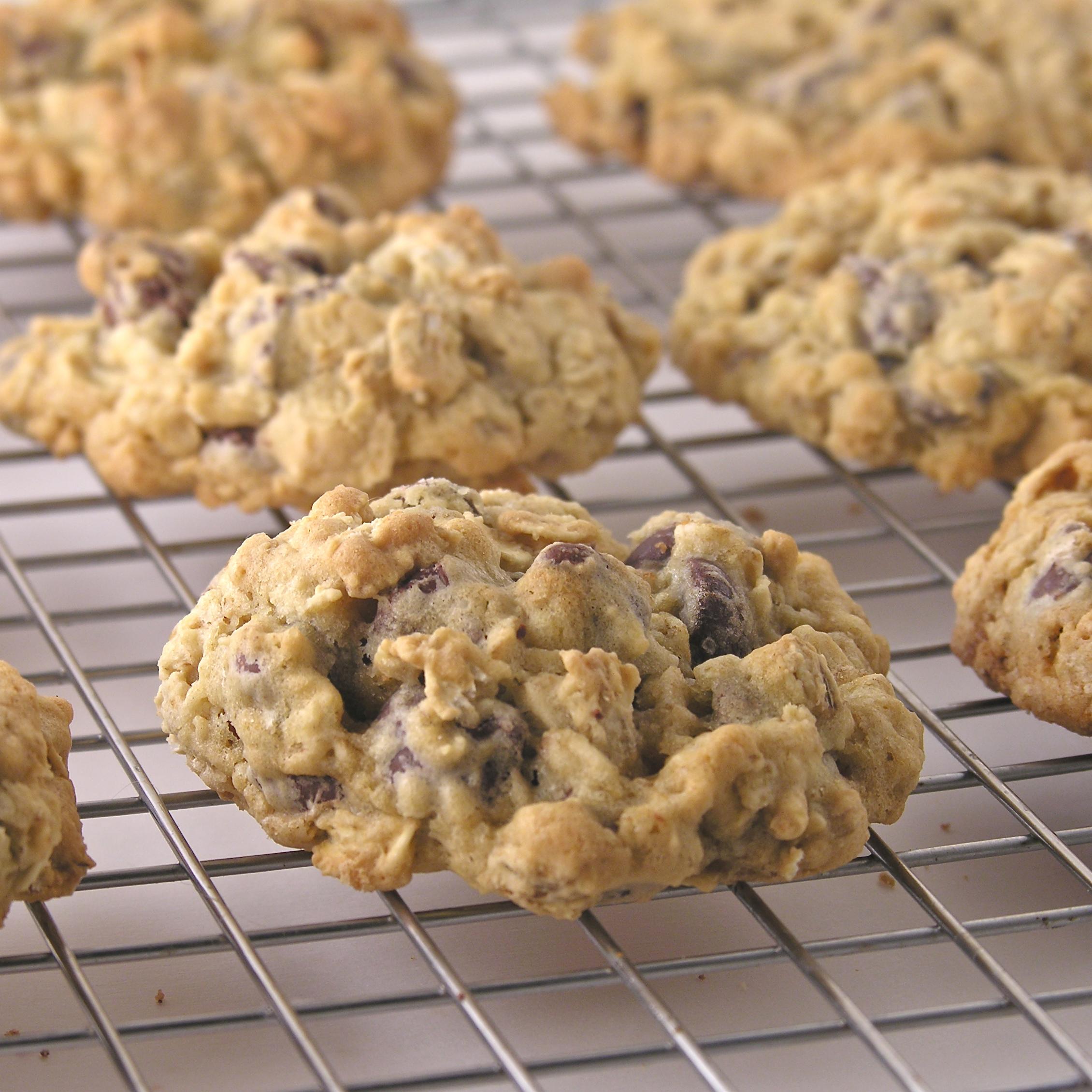 Chocolate Chip Oatmeal Cookies | eASYbAKED