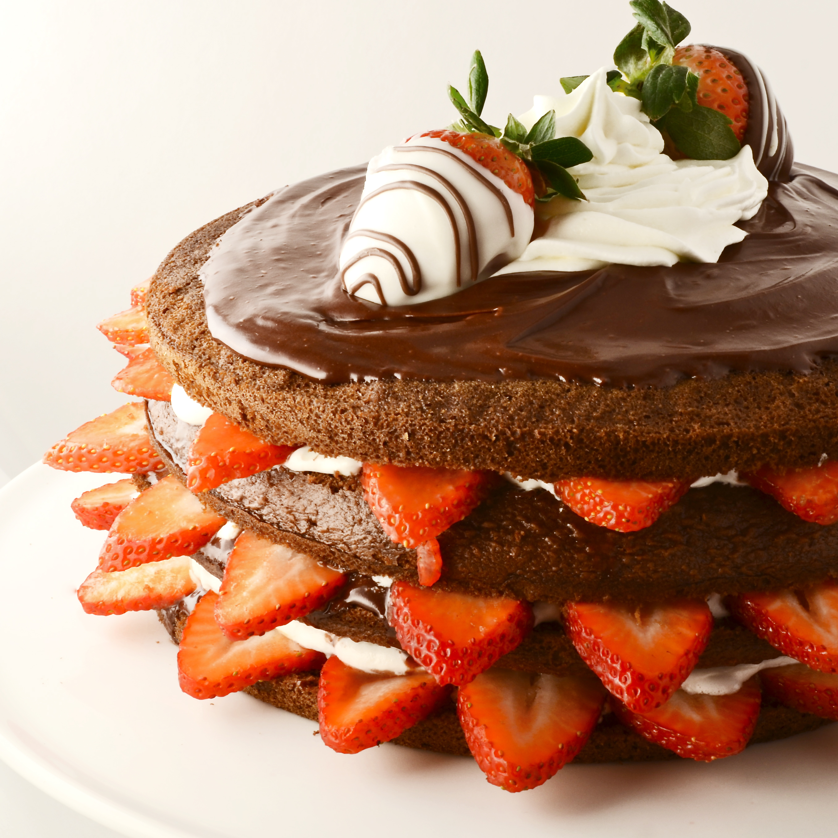 Chocolate Strawberry Layer Cake! eASYbAKED