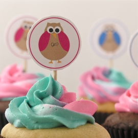 Gender reveal cupcakes- two tone frosting