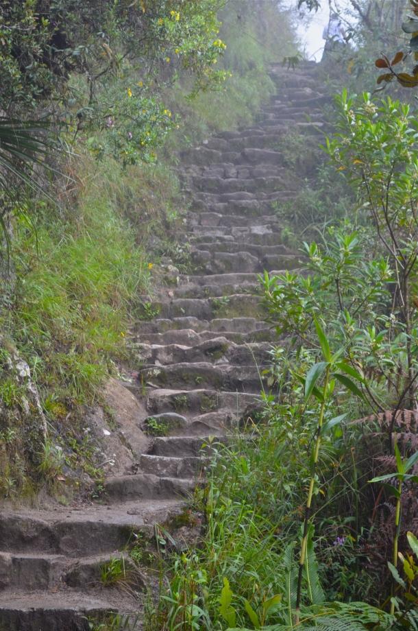 Stairs up Wayana Picchu