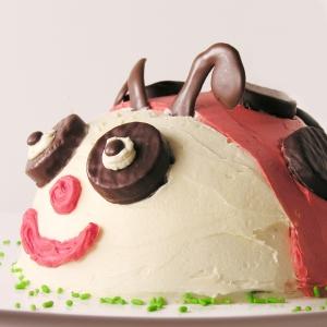 Ladybug Cake!!