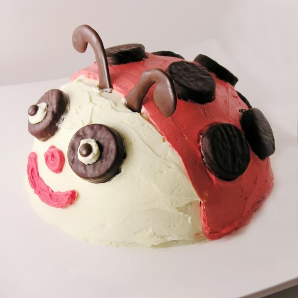 Ladybug cake!!!!!