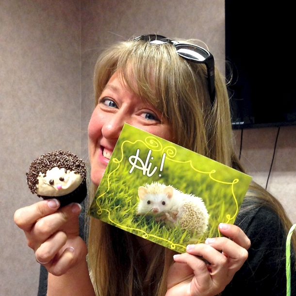 Hedgehog Cards!