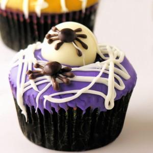 Spider Eggs1