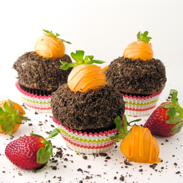 carrot-patch-cupcakes2