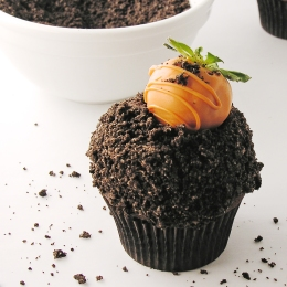 carrot-patch-cupcakes5